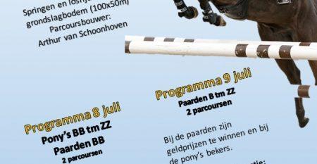 flyer 8